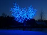 Светодиодная вишня CBL-03 синяя